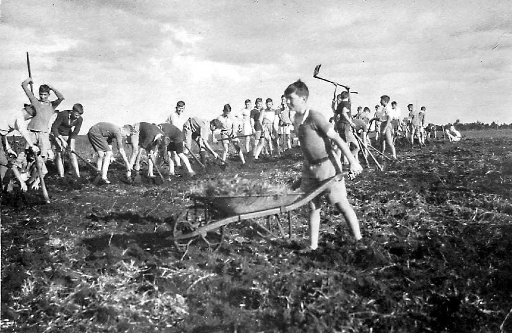 Hard at it with jembes, laying out the grounds at Kabete in 1931